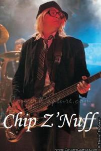chip-brand